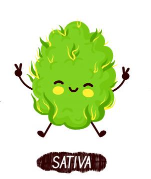 sativa-weed-bud