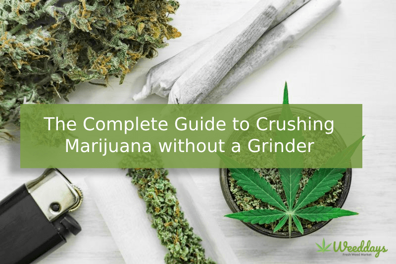 The Complete Guide to Crushing Marijuana without a Grinder